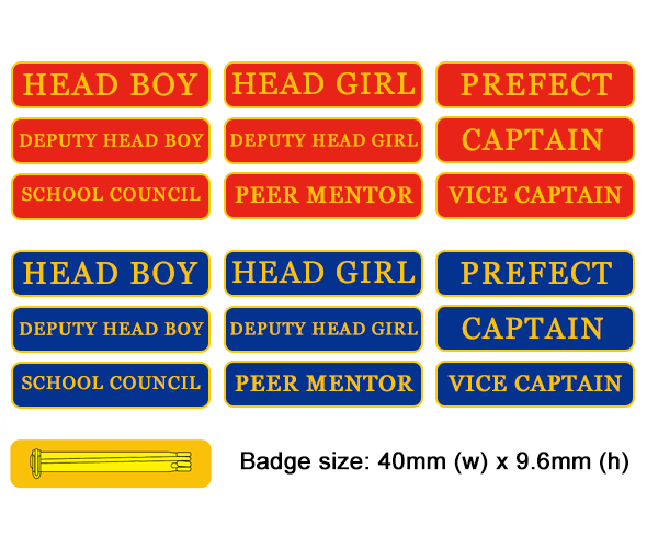 Range of bar badges in blue or red with a brooch pin